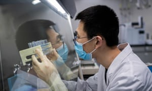 A researcher in Beijing works on an experimental coronavirus vaccine
