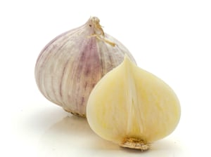 'Imagine a large shallot that is wall-to-wall garlic...'