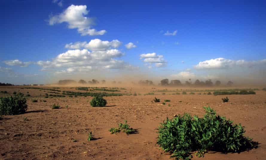 Soil erosion takes effect on Suffolk farmland in the UK.