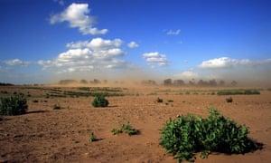 Soil erosion on farmland in Suffolk, UK.