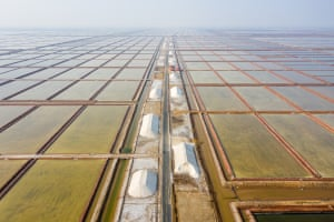 Salt fields in Shandong province