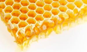Really natural: honey on a honeycomb.