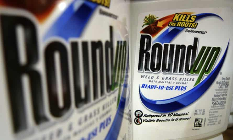 Bottles of Roundup herbicide, a product of Monsanto. Findings come as regulators in several countries consider limiting the use of glyphosate-based products in farming.
