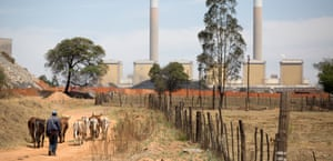 A farmer herds his cattle in front of the Kendal power station in Mpumalanga province, South Africa.