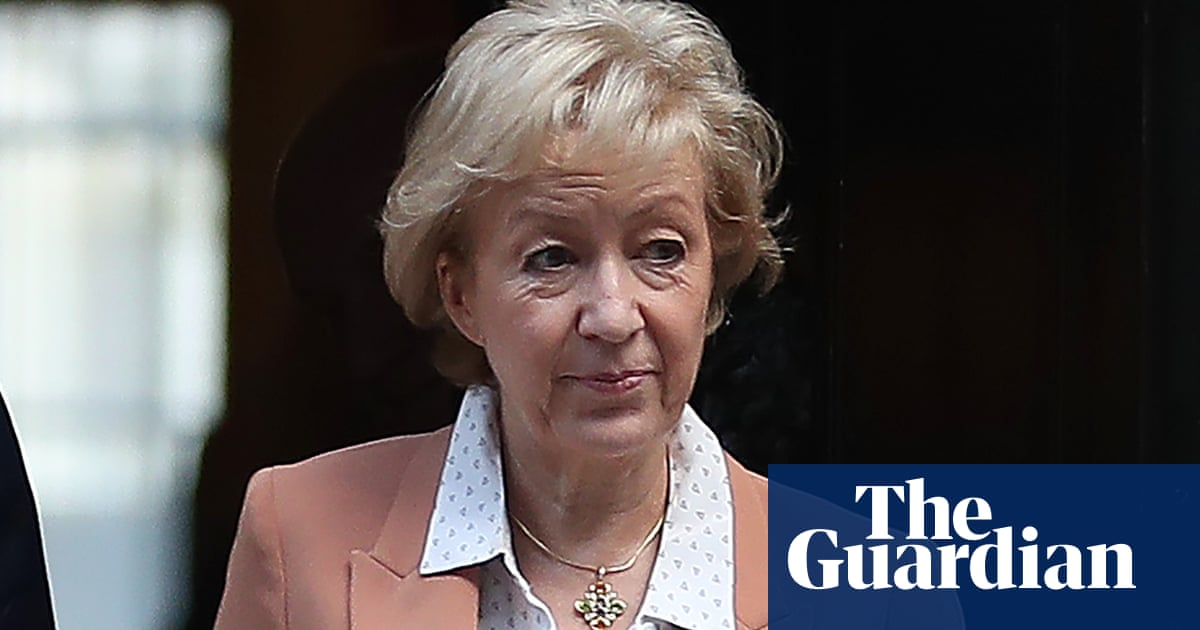 Commons Brexit vote will be 'take it or leave it', Leadsom tells MPs