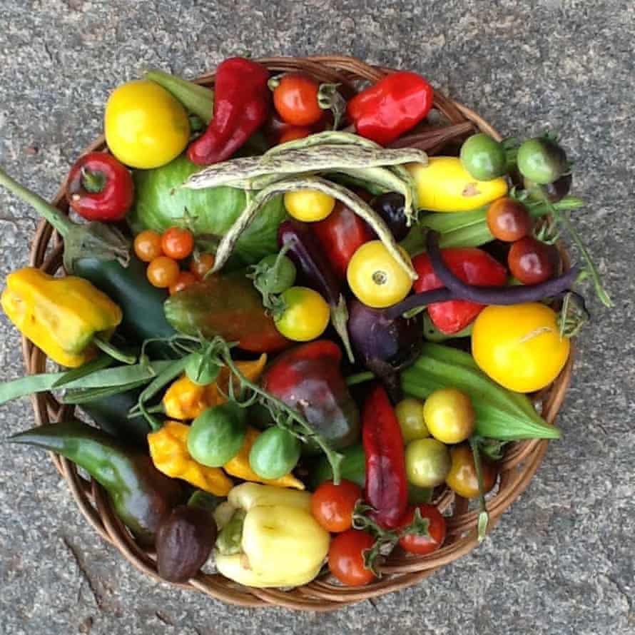 The rich variety of produce from Prabhakar Rao's farm in Bengalaru.