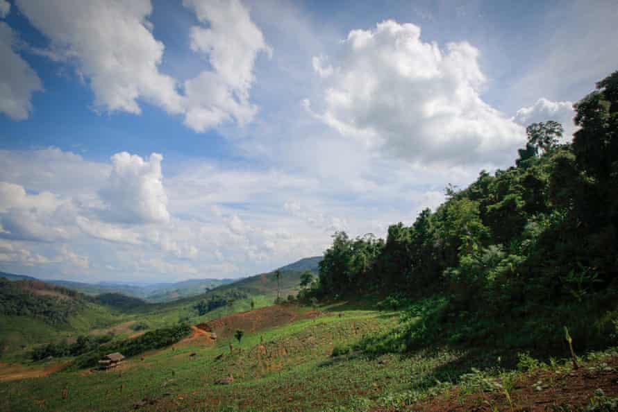 Phou Louey national park