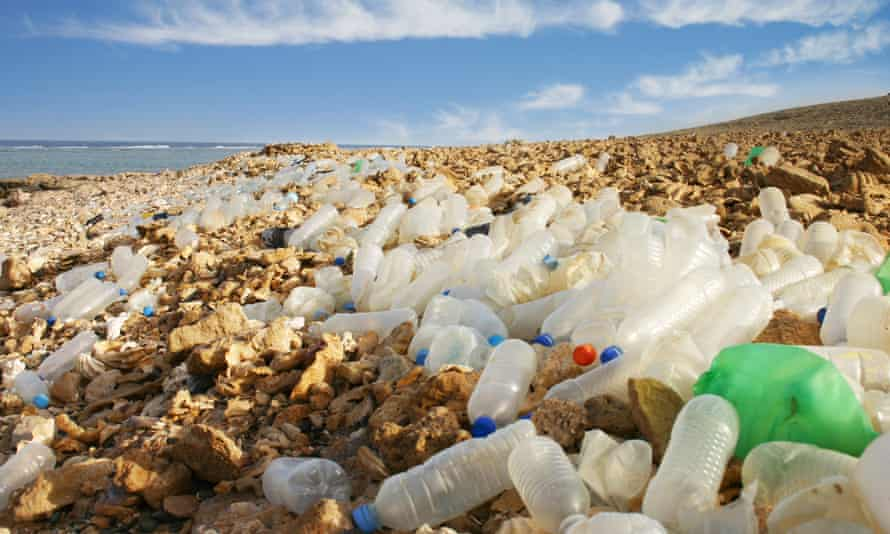 Losing our bottle? Plastic waste on an Egyptian beach.
