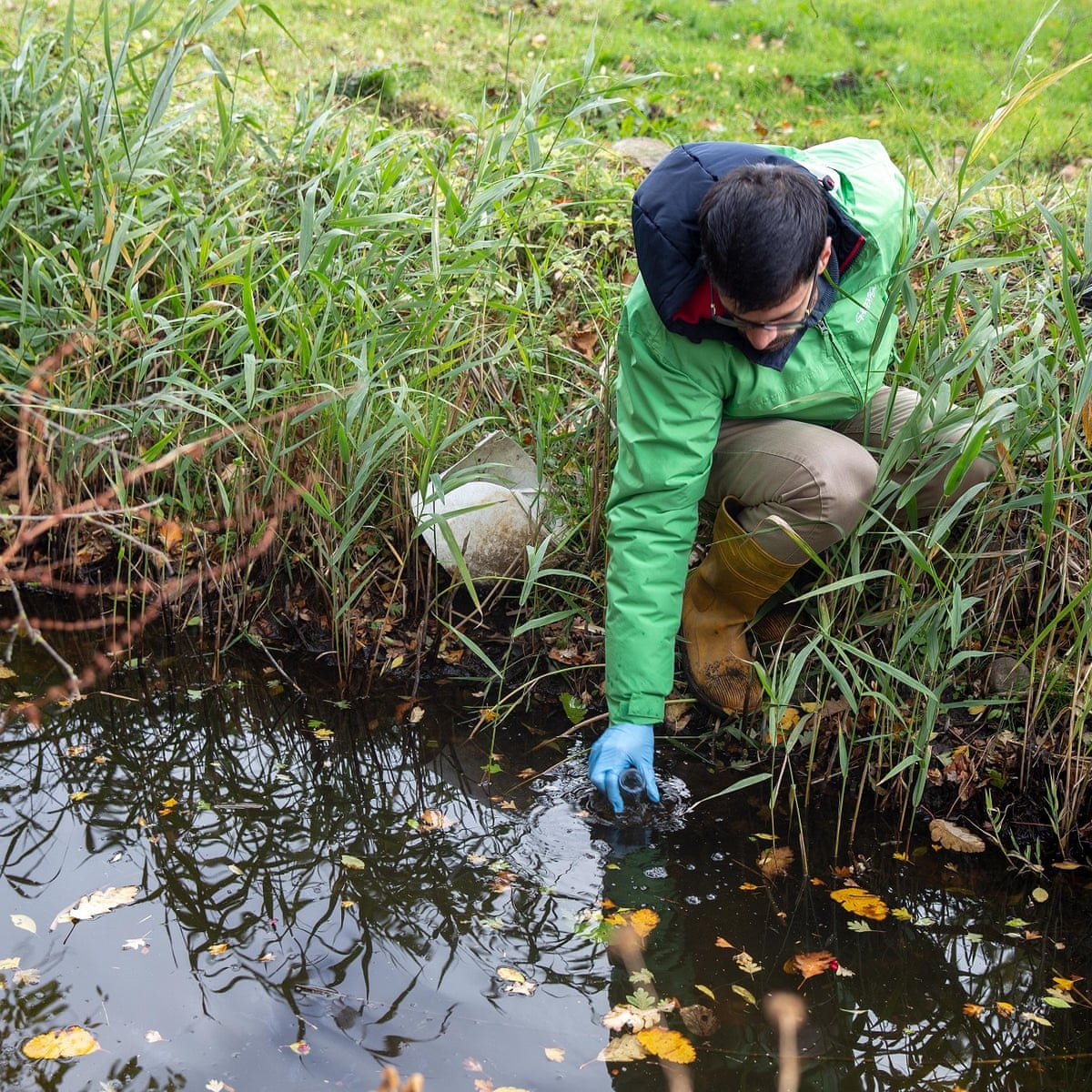 Pesticides and antibiotics polluting streams across Europe | Environment |  The Guardian