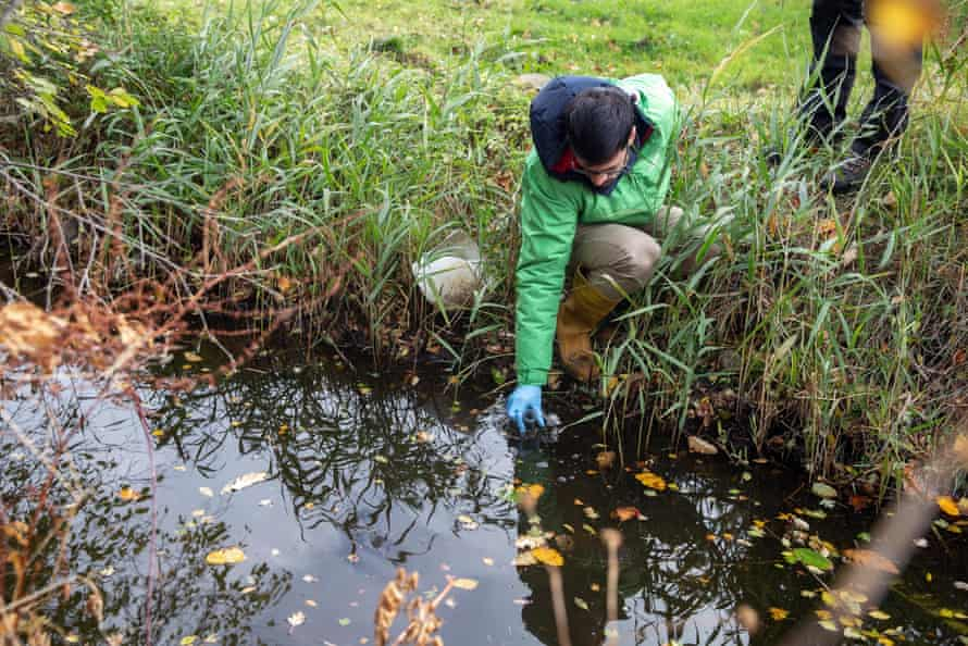 Jorge Casado collects a water sample from a stream