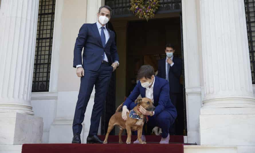 Serbia's PM, Ana Brnabić, strokes Peanut, her Greek counterpart's dog, in Athens on 13 May.