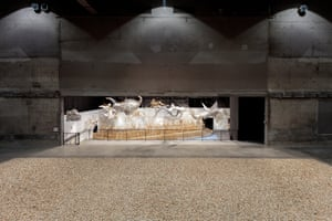 Installation view of Ai Weiwei: Life Cycle