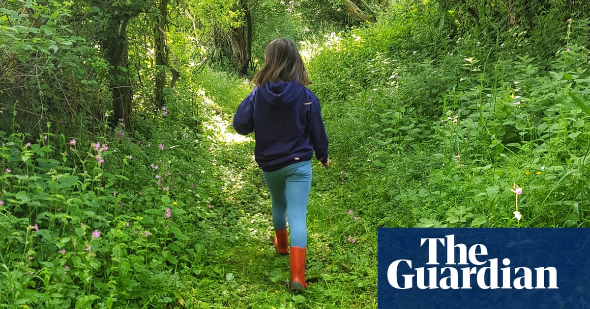 Young country diary: an A-Z of my nature walk