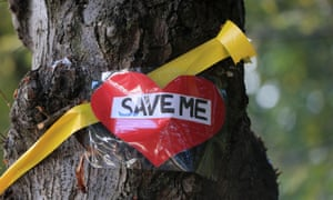"""A """"save me"""" message  on a tree."""