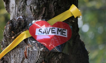 """A yellow ribbon and """"save me"""" message on a tree on Rivelin Valley Road in Sheffield."""