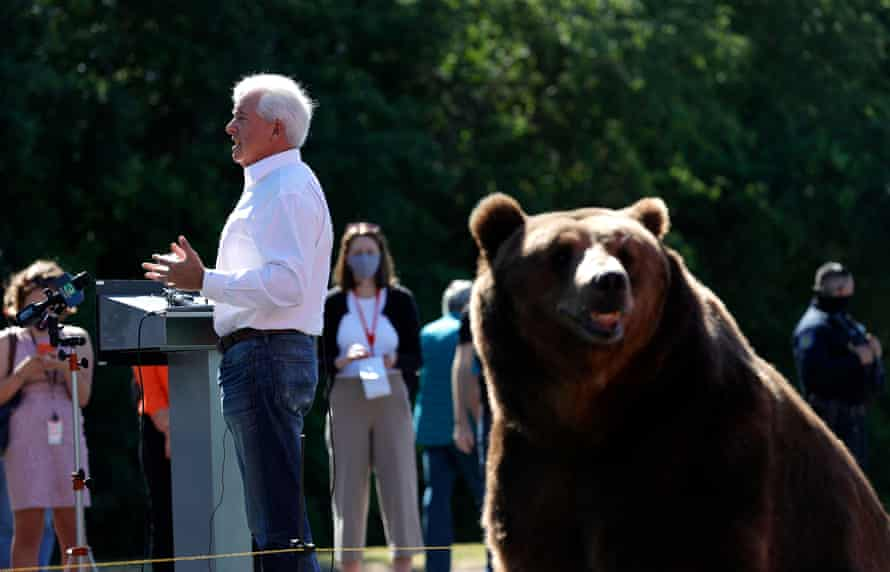A bear sits behind California Republican John Cox as he speaks during a campaign rally at Miller regional park on Tuesday in Sacramento.