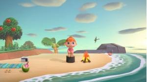 Animal Crossing: New Horizons on Nintendo Switch.