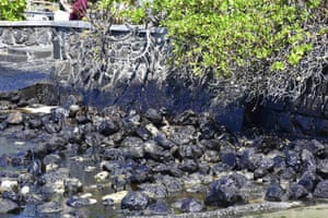 Rocks are covered with oil in Mahebourg. The prime minister, Pravind Jugnauth, has declared a state of environmental emergency