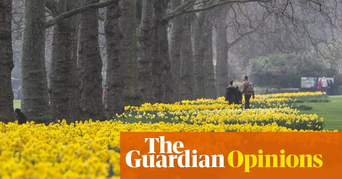 Lets Tackle Britains Invasive Species Just Leave The Daffodils