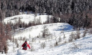 skier on powdery wooded slope
