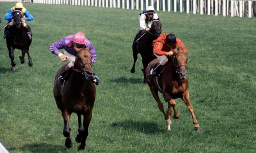 جو مرسر رفت و با پیروزی در 1972 پادشاه جورج ششم و ملکه الیزابت استیکس در سرتیپ جرارد.