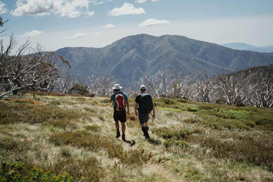 Mountain views along the Falls to Hotham Alpine crossing.