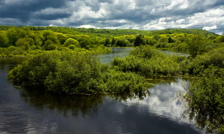 A flooded section of the St. Mary's River during springtime.