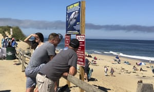 People look out at the shore after a shark attack at Newcomb Hollow Beach in Wellfleet, Massachusetts.