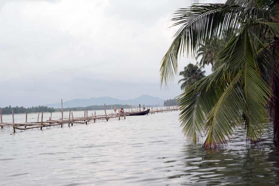 The backwaters