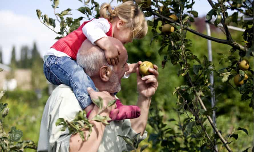 Until recently it was common for country houses to have their own orchards and varieties.
