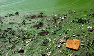 Toxic green scum and brown foam float on one of China's biggest freshwater lakes, Taihu Lake