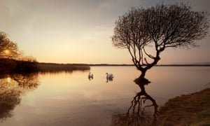 Two swans at sunset, Kenfig national nature reserve in south Wales