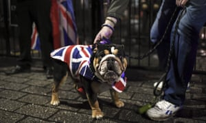 A dog wearing a Union Jack outfit near the gates of Downing street
