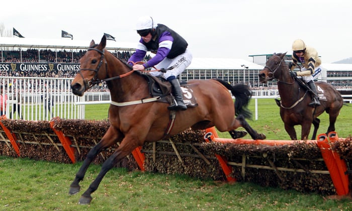 Cheltenham Festival glory and tragedy: Campbell Gillies and