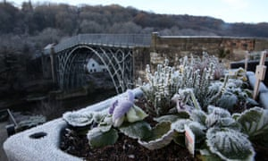 Frost on the flowers overlooking the Iron Bridge in the town of Ironbridge, Shropshire