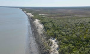Aerial view of damaged mangroves
