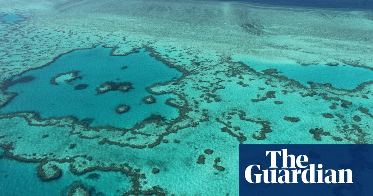 World Heritage Committee agrees not to place Great Barrier Reef on 'in danger' list