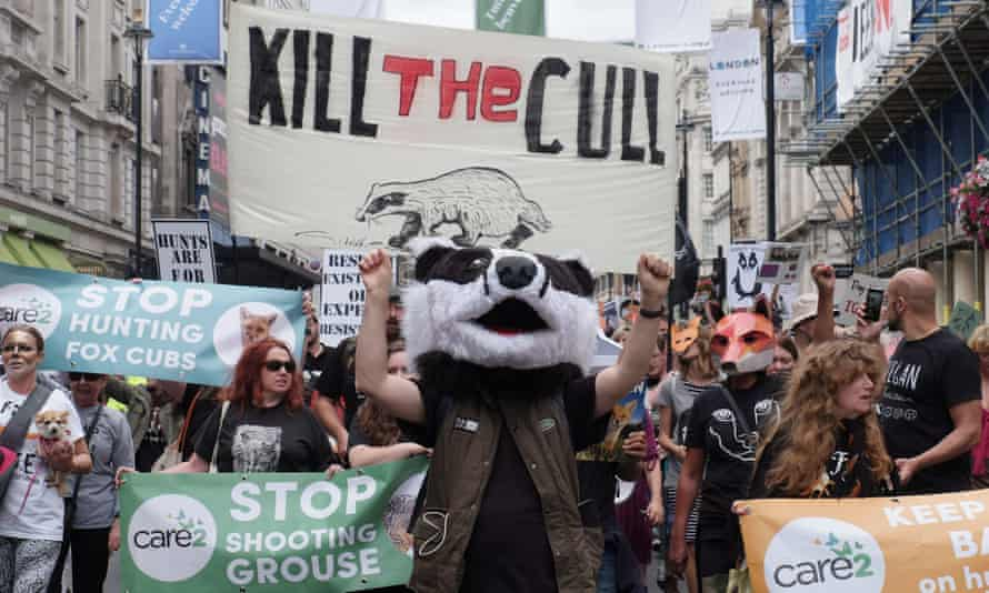 Protest against badger culling and fox hunting in central London this month.