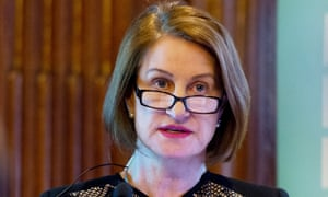 Dame Lowell Goddard: concerns were raised, Home Office ...