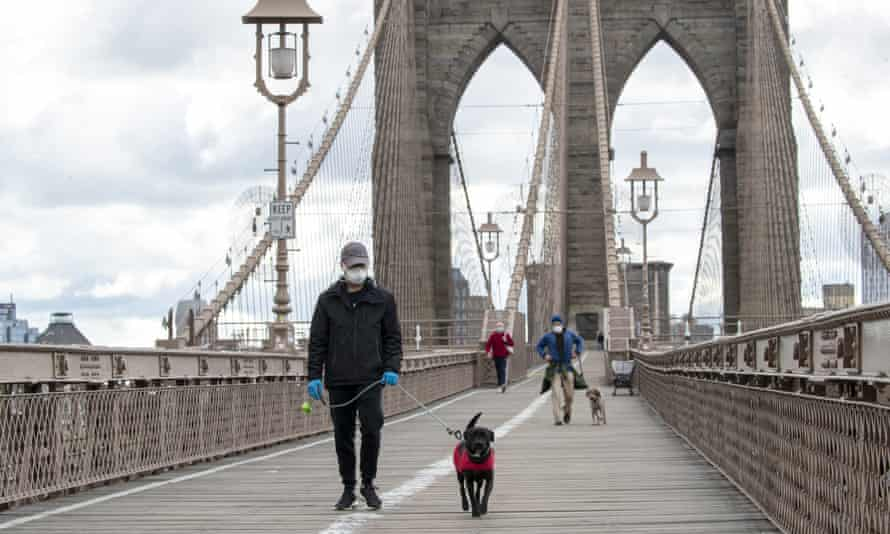 People wear facial masks for protection as they walk their dogs on the Brooklyn Bridge in New York on Friday.
