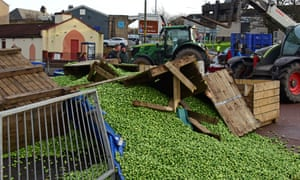 Brussels sprouts strewn across a road in Rosyth
