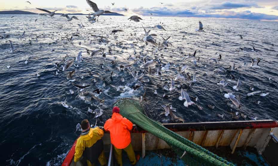 A fishing trawler in the North Sea off the coast of Shetland.
