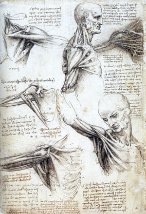 Leonardo da Vinci's anatomical analysis of the movements of the shoulder and the neck