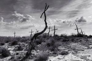 Mark Benham's 'Forest of the Crosses #4