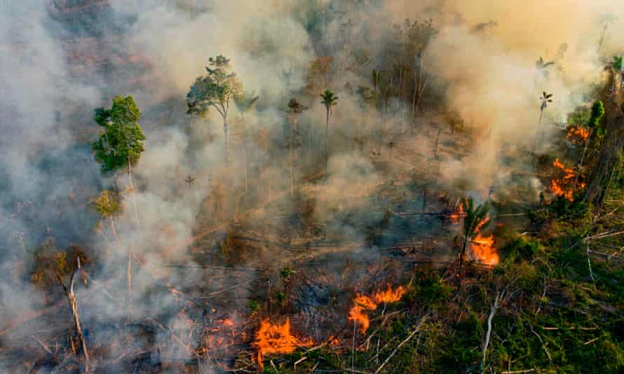Smoke and flames rise from an illegally lit fire in an Amazon rainforest reserve, south of Novo Progresso in Para State, Brazil, in August.