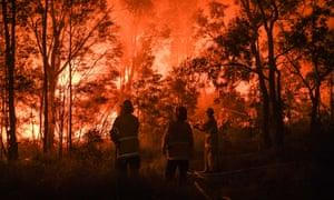 Firefighters fight a bushfire in south-western Sydney.