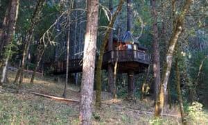 The Treehouse Paradise B&B, Cave Junction, Oregon.
