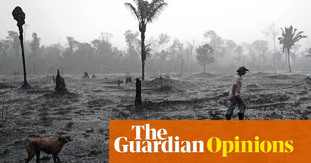 The Amazon rainforest is losing 200,000 acres a day. Soon it will be too late