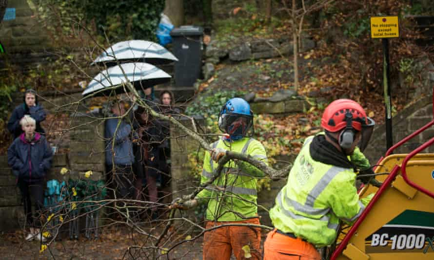 Members of the public look on as contractors cut down a tree in Rustlings Road, Sheffield.
