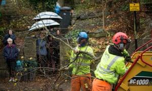 Contractors cut down a tree in Rustlings Road, Sheffield.